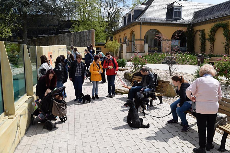 Heidelberg Zoo 3a